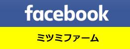 ミツミファーム Facebook